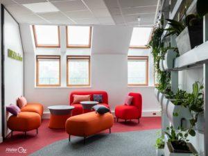 lounge aménagement bureaux de travail plante